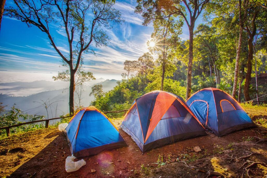 Choosing The Right Camping Stove